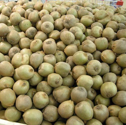 과일 판매모습