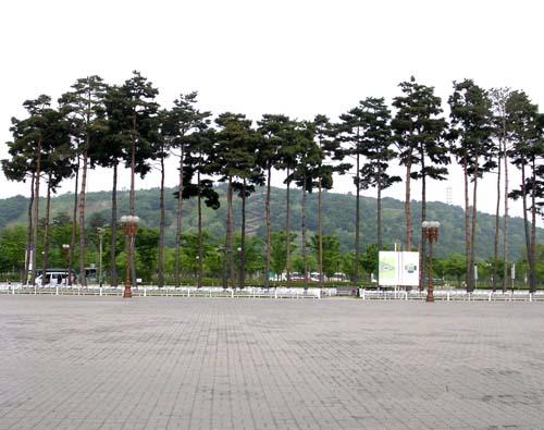 장송 조경군식모습(월트컵축구경기장앞)