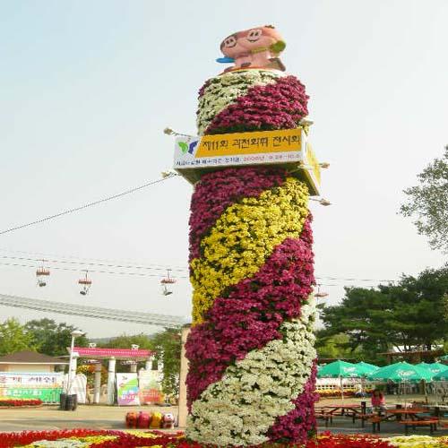 국화꽃으로 만든 탑