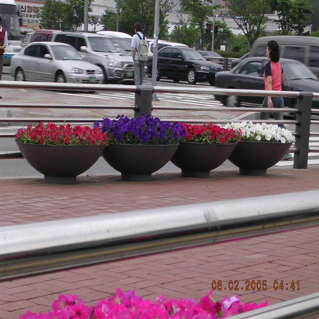 도로변 화분식재 모습